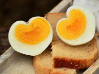 egg-hen-s-egg-boiled-egg-breakfast-egg-160850